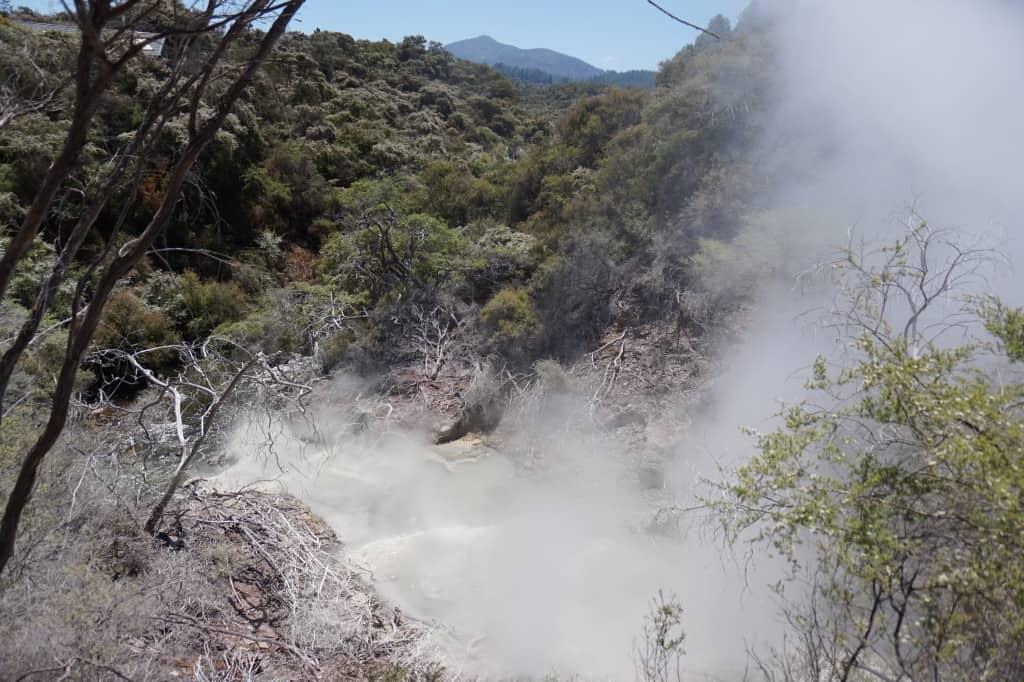 Thermal Wonderlands New Zealand