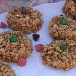 gf gingerbread cookies