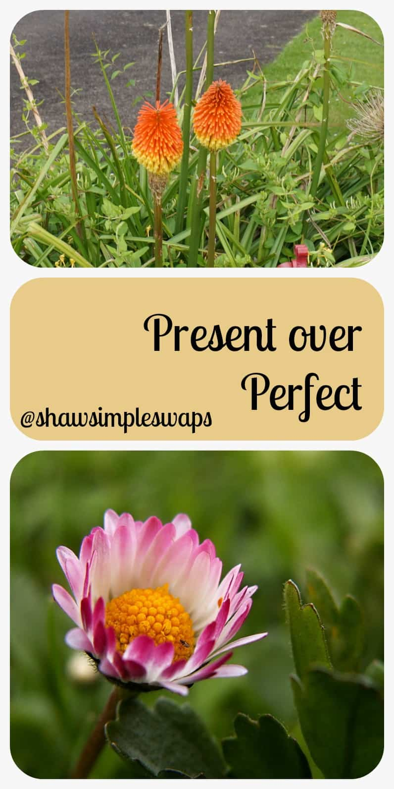 Present over Perfect- Fertility Friday @shawsimpleswaps Finding peace & learning to slow down and love yourself, your life, and embracing the future of the unknown.