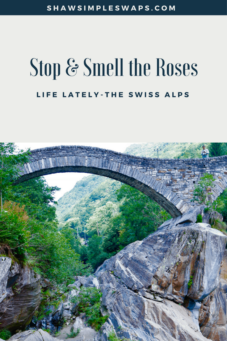 Life Lately - Back in the Swiss Alps @shawsimpleswaps