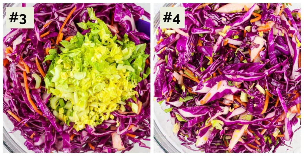 Two picture collage with first a bowl of purple shredded cabbage with green celery leaves, the second a glass bowl with all the purple cabbage, carrots and green leaves mixed together.